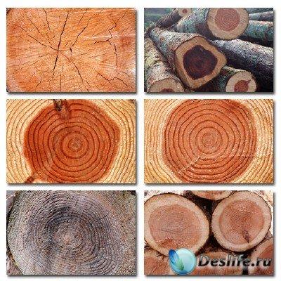 Набор профессионального клипарта Wooden Cut (Срезы деревьев)