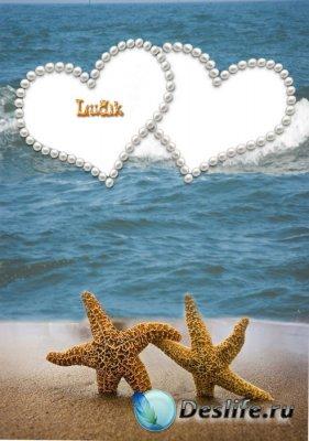 Рамка для фотошопа - 2 морские звезды