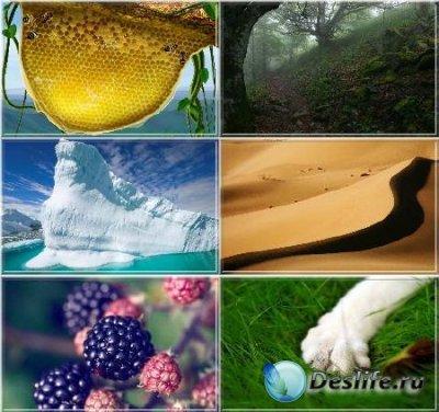 Amazing Nature (Удивительная Природа) HD Wallpapers