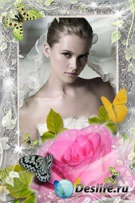 Рамка для фотошопа - Розовое искушение