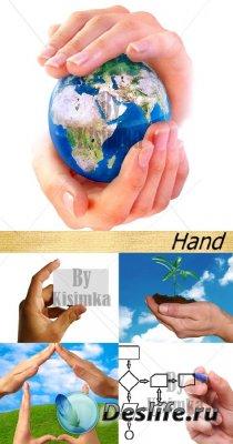 Stock Photo: (Руки) Hand