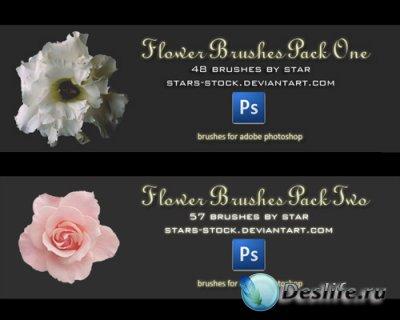 Flower Brushes Pack - Кисти для Фотошопа