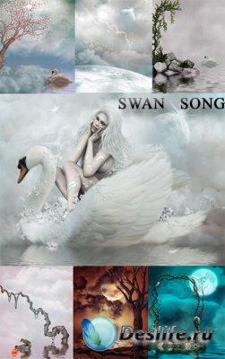 Фоны для фотошопа - Swan song