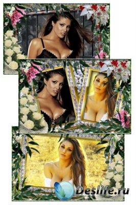 Рамки для фотошопа - Розы и листва