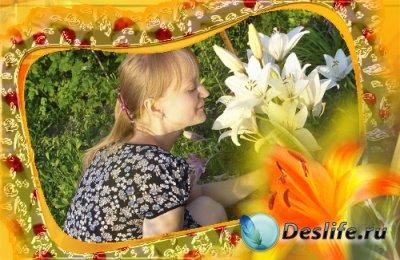 Рамка для фотошопа - Летняя
