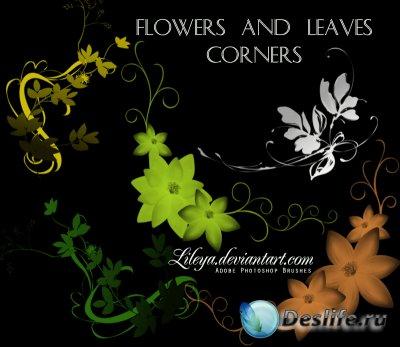 Flowers and Leaves Corners - Кисти для Фотошопа