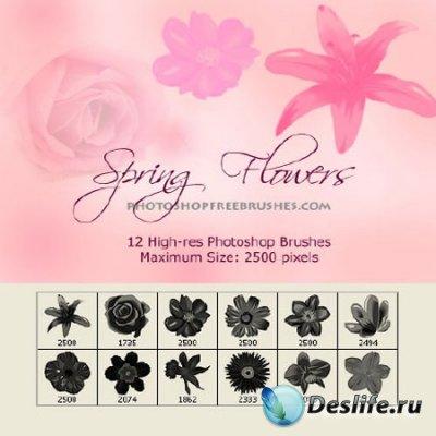 Кисточки для фотошопа - Весенние цветы