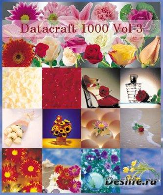 Фотоклипарт - Datacraft 1000 vol.3