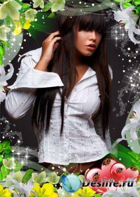 Рамка для фотошопа - Белоснежная лилия