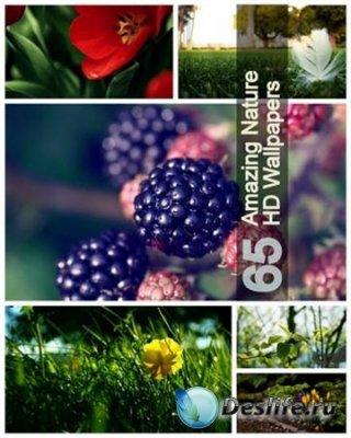 Обои для рабочего стола - 65 Amazing Nature HD Wallpapers