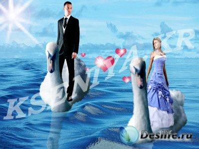Костюм для фотошопа - Любовь и лебеди