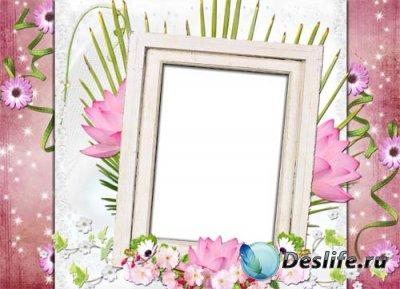 Рамка для фотошопа - Кувшинки