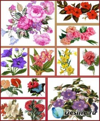 Клипарт - Набор цветов