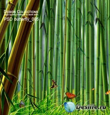 PSD исходник для фотошопа - Butterfly 5