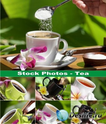 Stock Photos - Чай (Tea)