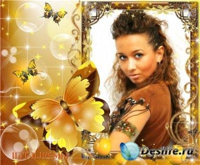 Рамка для фотошопа – Солнечные бабочки
