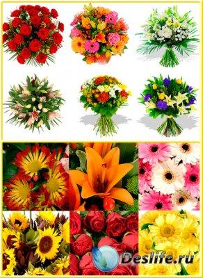 Букеты и цветочные фоны