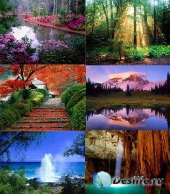 Обои для рабочего стола - Чудесная природа (Miraculous Nature)