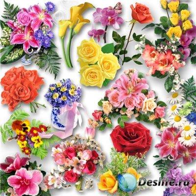 Цветочный клипарт / Clipart - Flowers