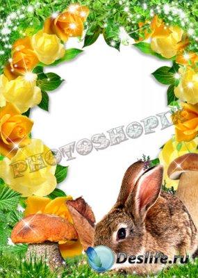 Рамка для Photoshop – Осенний заяц