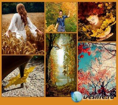 Обои для рабочего стола - Осенний пейзаж (подборка №3)