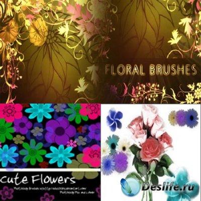 Набор кисточек - Цветы