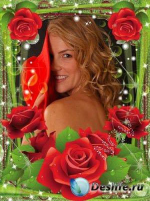Рамочка для фотошопа - Красные розы