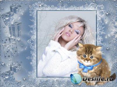 Рамочка для фотошопа - Милый котенок
