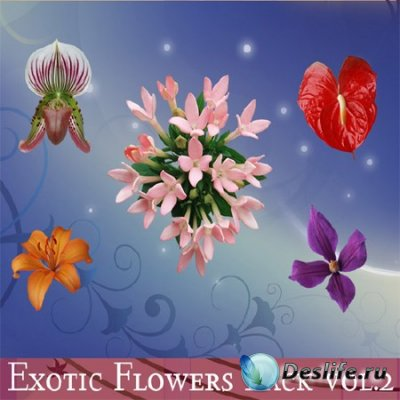 PSD клипарт для фотошопа - Цветы