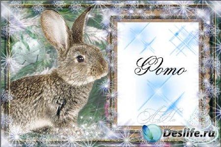 Рамка с кроликом
