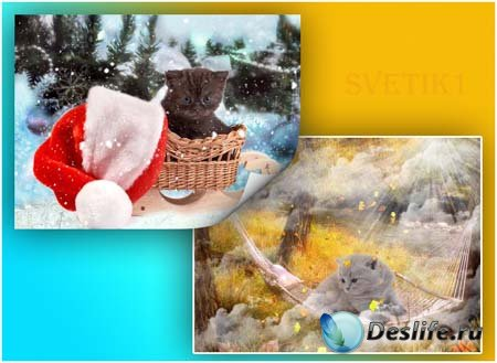 PSD исходники для фотошопа - Киска 2