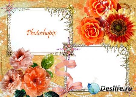 Рамка для фотомонтажа – Оранжевые розы