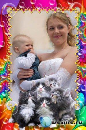 Рамка для фотошопа - Мои Котята