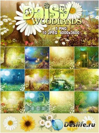 Набор фонов для фотомонтажа - Daisy Woodlands