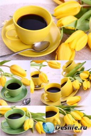 Stock Photos - Чашка кофе с тюльпанами