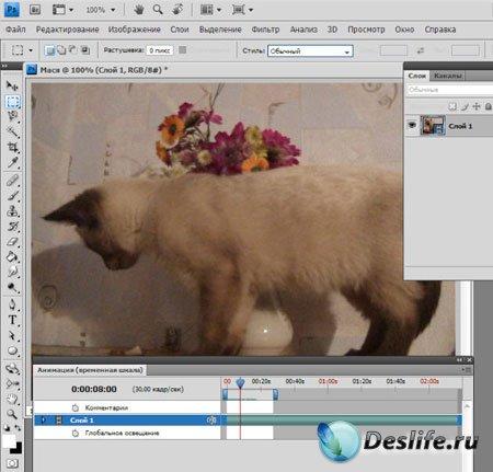 Видеоурок – Редактирование видео в программе Фотошоп (Зинаида Лукьянова)