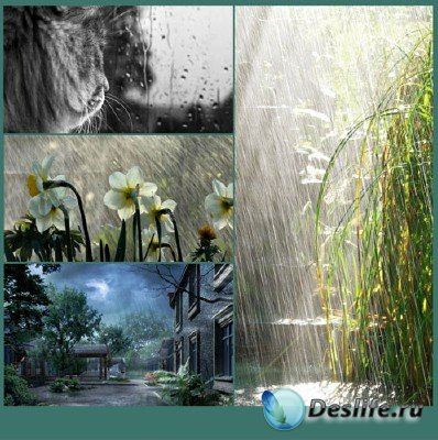 Красоты природы (подборка №16 - Природа под дождем)