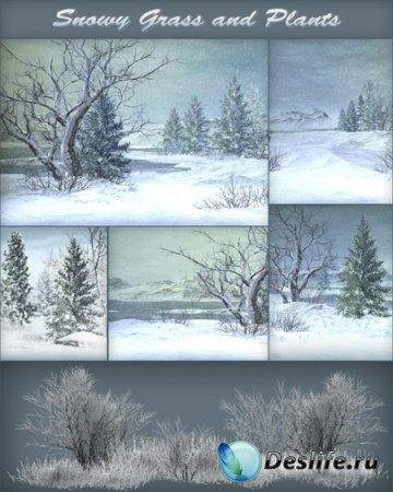 Фоны - Снежные долины