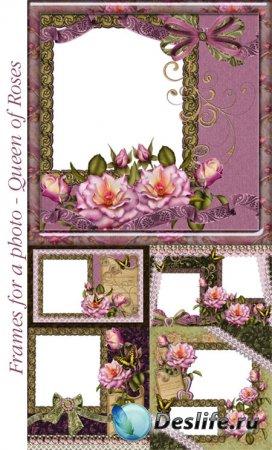Рамки для фотошопа - Королева роз