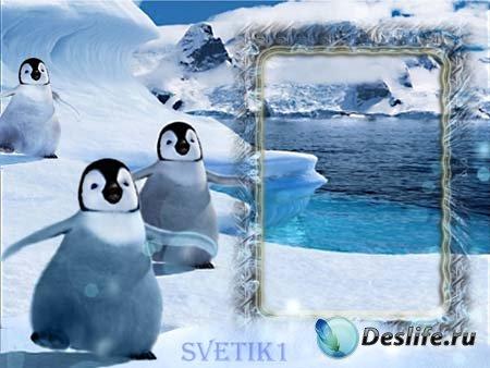 Рамка для фотошопа - Пингвины