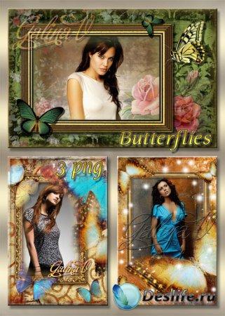 Винтажные рамки для фотошопа - Бабочки