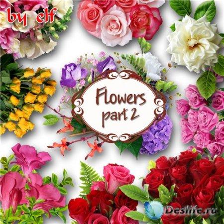 Клипарт PNG (без фона) - Букеты цветов. Часть 2