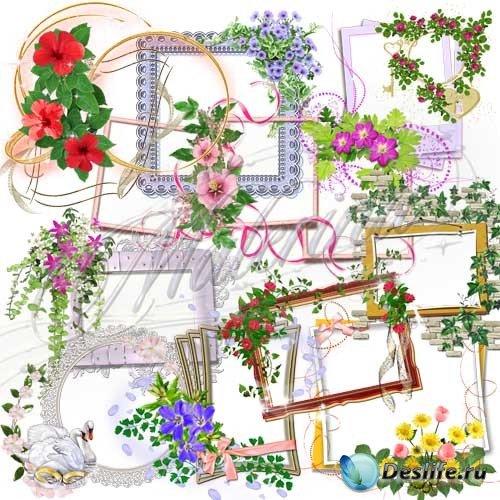 Вырезы для рамок с цветами