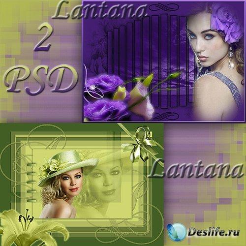 PSD исходники для фотошопа - Green and violet