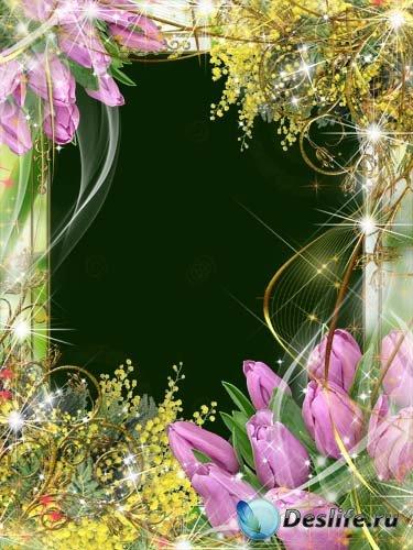 Рамка для фотошопа – Мимозы и прекрасные тюльпаны к 8 Марта