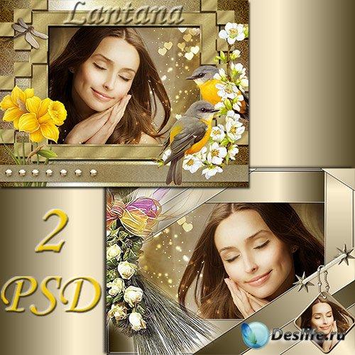 PSD рамочки для фотошопа - Весенний сон