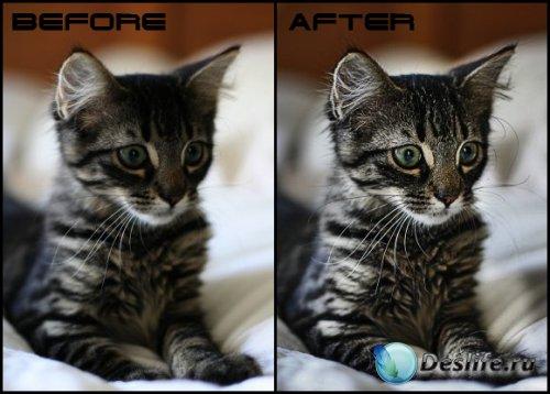 Урок фотошоп - Улучшение качества фотографии с помощью High Pass Filter