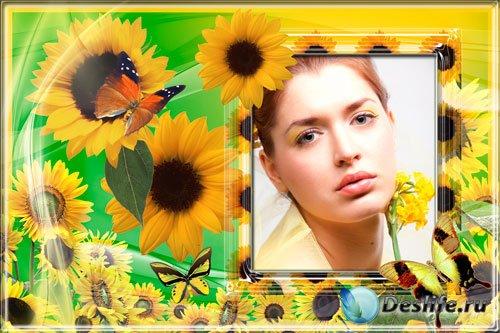Рамка для фотошопа - Солнечные цветы