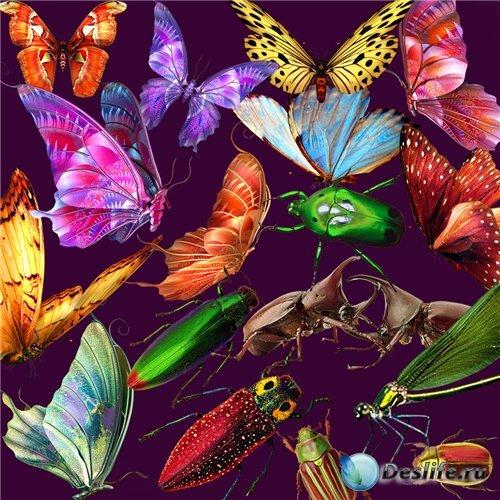 PNG клипарт - Бабочки, насекомые, стрекозы
