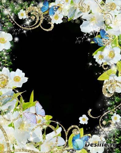Рамка для фотошопа –  Белые нежные цветы